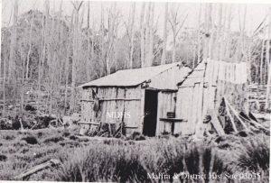 spring-hill-hut-1